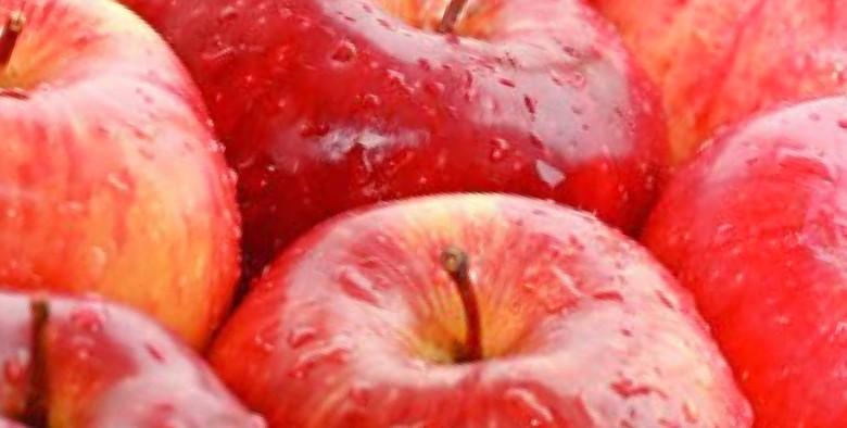 Apfelkompott selbermachen
