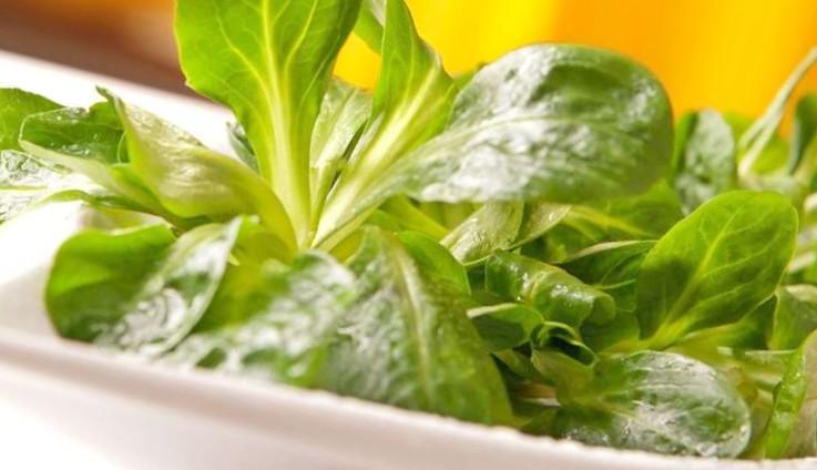 Salat mit Feta und Melone
